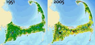 Cape Cod Quahog Predicts 100 Days Of Sunny Beach Weather  Cape Weather Cape Cod