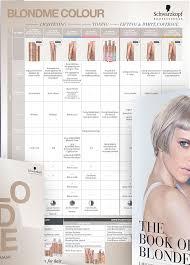 Bm Blondme Color Chart 2158951