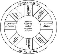 Professionalism In Nursing Professionalism In Nursing Behaviors Of Nurse Practitioners