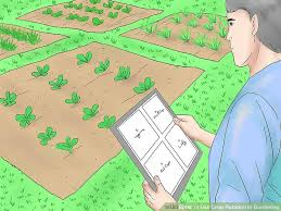 Crop Rotation Chart Vegetable Gardening How To Use Crop Rotation In Gardening 11 Steps With Pictures