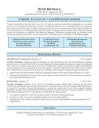 free forensic accountant resume example