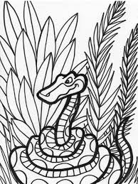 Small Picture Snake Coloring Pages 11 Coloring Kids