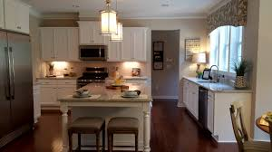 Kitchen For New Homes The 5 Best Kitchens In Raleigh New Homes Ideas