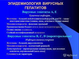 Презентация на тему Вирусные гепатиты Этиология эпидемиология  3 ЭПИДЕМИОЛОГИЯ ВИРУСНЫХ ГЕПАТИТОВ