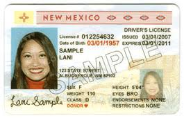 Could Enforcement Real » Delay Id Dhs Nm Albuquerque Journal For