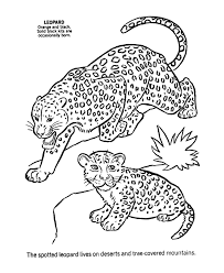 Cute Baby Animal Coloring Pages Wild Animal Coloring Pages