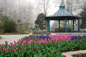 brookside gardens in spring