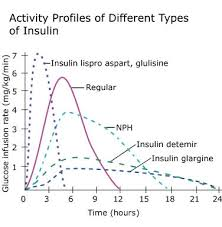 Types Of Insulin Diabetes Education Online