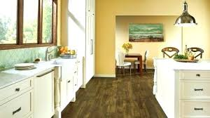 cleaning armstrong vinyl floors plank reviews luxury flooring steam cleaning armstrong vinyl flooring cleaning armstrong vinyl