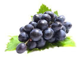 Résultats de recherche d'images pour «grape»