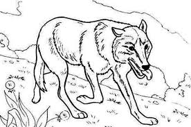 Small Picture Wolf Hunting for Food Coloring Page Download Print Online