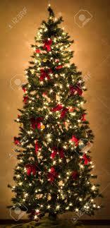 a beautiful christmas tree glowing with lights Stock Photo - 960434