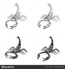 Sada černé A Bílé Scorpions Pro Tetování Znamení Zvěrokruhu