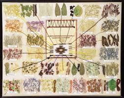 Navajo Dye Chart Navajo Natural Dyes Age 09 Fibers Clothing How To Dye