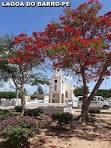 imagem de Araripina Pernambuco n-18