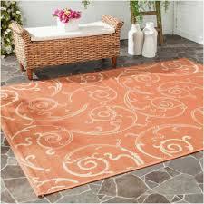 outdoor rug 9 x 12 amazing bedroom 12x12