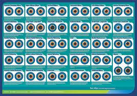 Toni Miller Iridology Chart Educational Materials International Iridology
