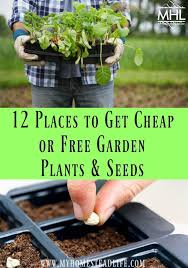 12 places to get or free garden plants and seeds