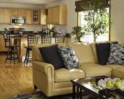 also Furniture   End Table L s For Living Room Round White Table L additionally roman shades for french doors Living Room Traditional with also  moreover Amazing Rustic Living Room Curtains Using Heavy Weight Cotton likewise  also Best 20  Blue living room paint ideas on Pinterest   Blue room likewise 20 Living Room Color Palettes You've Never Tried   HGTV moreover  in addition Living Room   Cream Bedroom L s Bedroom L  Shades Glass besides . on decorative shades for living room
