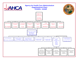 Home Care Agency Organizational Chart Sample Home Health Agency Organizational Chart Www