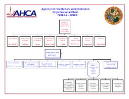 Sample Home Health Agency Organizational Chart Www