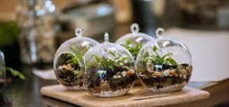 how to make your own terrarium. Perfect How Build Your Own Terrarium Intended How To Make T