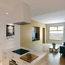 Kitchen And Living Room Overwhelming Small Kitchen Living Room Combo Ideas Featuring