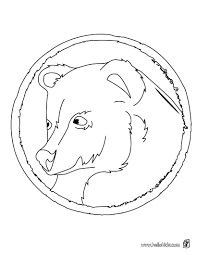 Asian Black Bear Coloring Page More