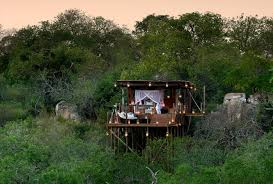 Tree House Hotel In South Africa Lion Sands Tinyeleti Treehouse Treehouse Hotel Africa