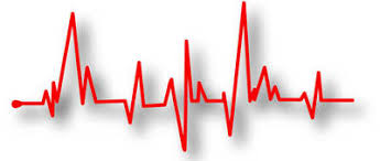 Target Heart Rate Calculator And Bpm Chart Disabled World