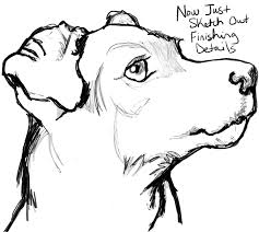 realistic dog drawing step by step. Perfect Drawing Step 11 Step11howtodrawrealisticterrierdogface Inside Realistic Dog Drawing By