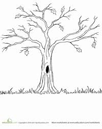 Small Picture Bare Tree Worksheet Educationcom