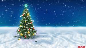 Christmas Tree Snow Sky wallpaper in ...