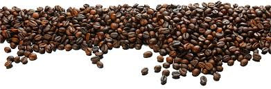 coffee beans png. Beautiful Png Coffee Bean Tea Cafe  Beans Background In Beans Png E