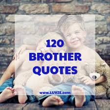 Brother Quotes Gorgeous 48 Cute Brother Quotes And Sayings