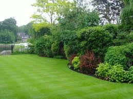 Small Picture Beautiful Garden Border Ideas Uk Images Home Design Ideas