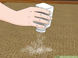 image titled clean a jute rug step 3