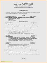 Teen Resume Example Examples Resume Examples For Teens Examples Job