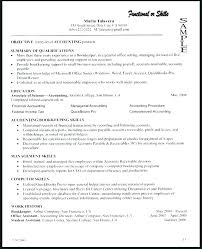 Ceo Resume Templates Best Best Project Manager Resume Templates