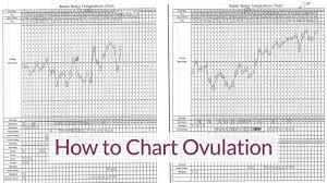 How To Chart Temperature Do You Know Your Most Fertile Times Aim Womens Wellness