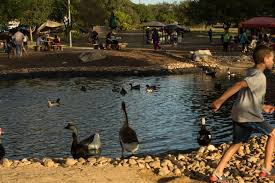 Bexar's Eye Rethrow: Eden Celebrates Its Resurrected Duck Pond