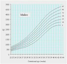 41 Organized Birth Weight Chart Percentile