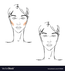 face chart makeup vector image