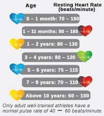 Healthy Resting Heart Rate Chart For Children Normal Heart
