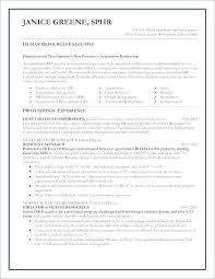 Executive Resumes Templates Delectable Resume Format For Word Best Of Free Downloadable Resume Templates