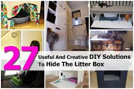 solutions-to-hide-the-litter-box-1-10