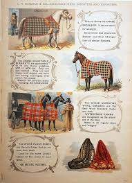 Horse Blanket Sizes Morethancoffee Info
