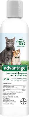 advantage flea tick treatment shampoo for cats kittens 8 oz bottle chewy com