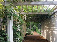 pergola 50p. classic arches and pergolas are optimal for preserving shade adding an inviting touch to any pergola 50p w