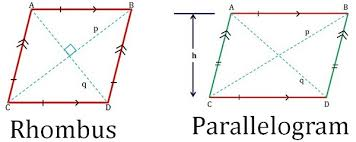 Parallelogram Venn Diagram Difference Between Rhombus And Parallelogram With
